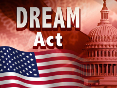 the dream act its affects The dream act is an amnesty bill that america cannot afford they do so in an attempt to distract american taxpayers from the long-term negative effects on the budget that are much more pronounced and severe.